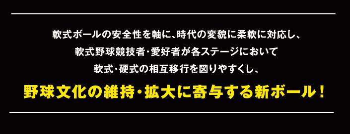 ball_m_05.jpg